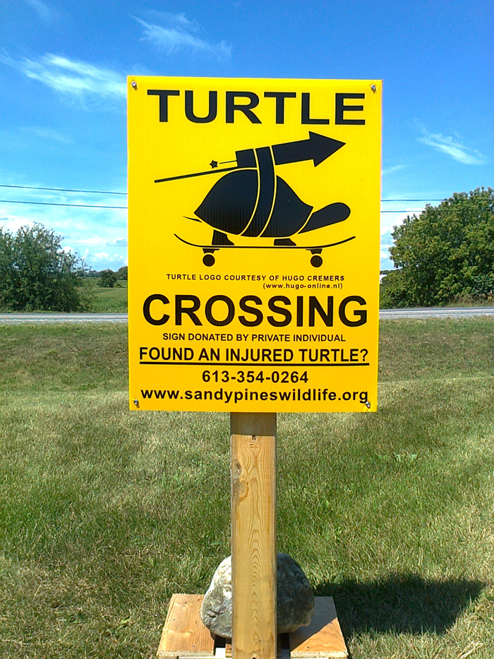 turtlecrossingsign
